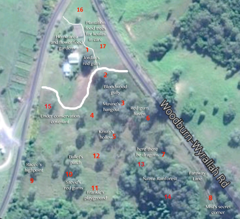 Aerial photograph of the property showing numbered zones and areas of interest