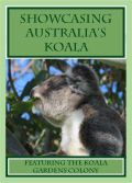 The book Showcasing Australia's Koalas is now available but the print run is limited so don't miss out!