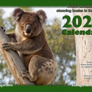 2021 Koala Gardens Calendar