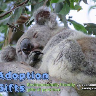 Gift Adoptions
