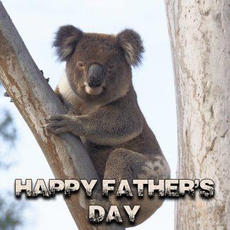 Fathers day adoption