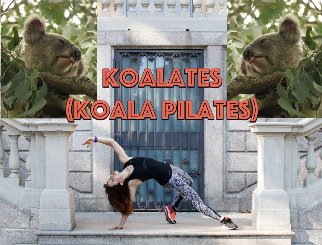 Come and do some koalates (pilates) with us and help koalas