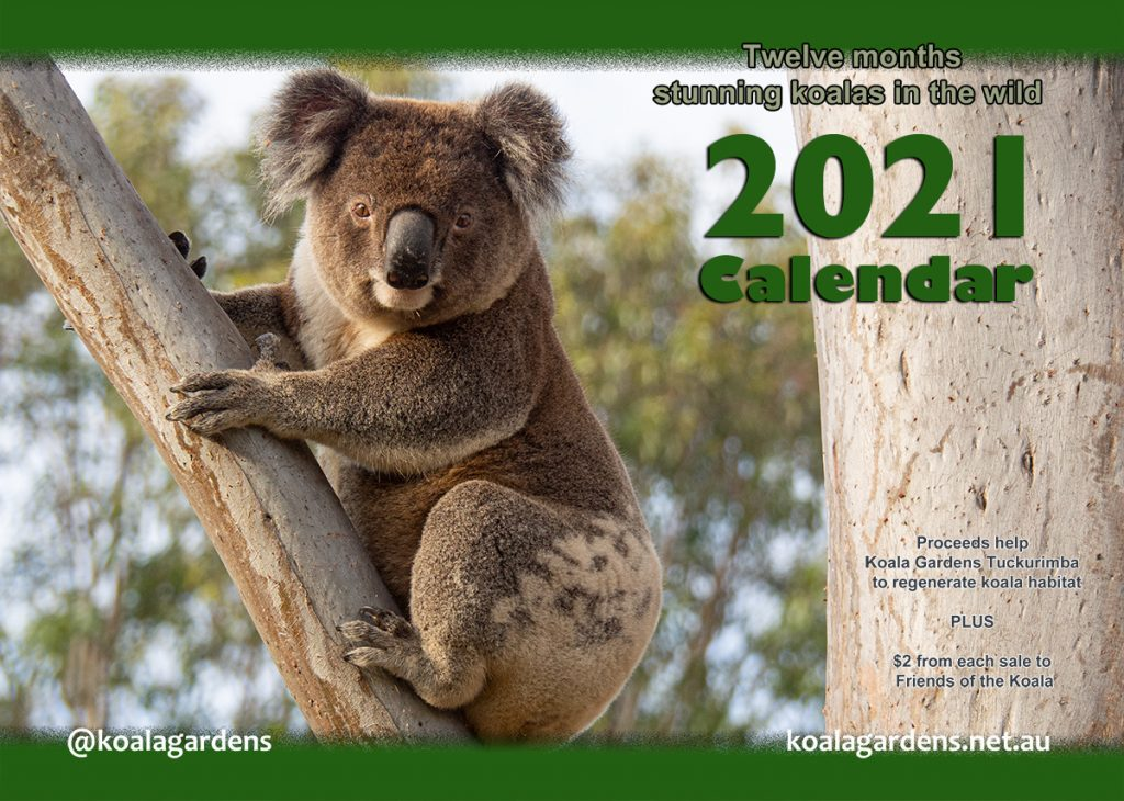 The ever popular Koala Gardens Calendar for 2021 is now on sale!