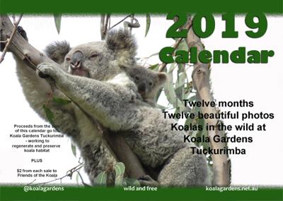Front cover of the 2019 Koala Gardens Calendar