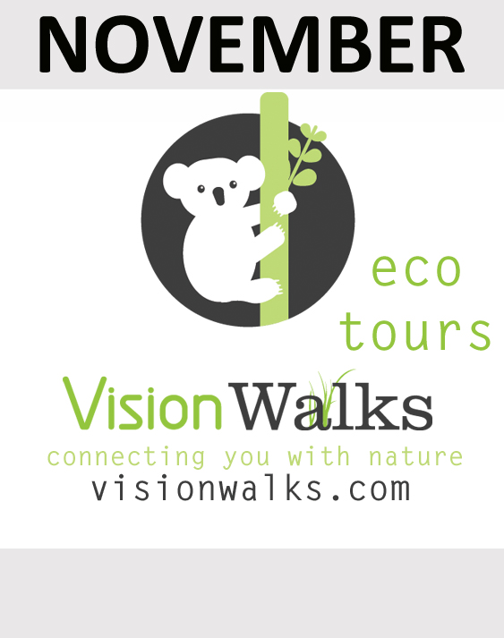 Vision Walks Eco Tours sponsor in November