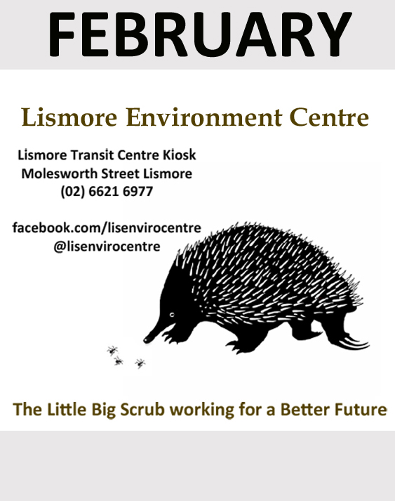 Lismore environment centre sponsor in February